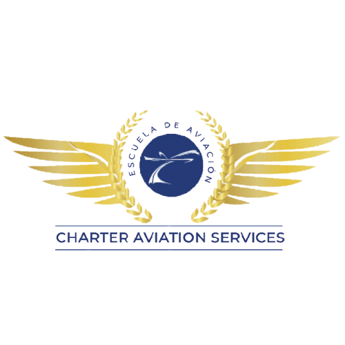 Charter Aviation Services